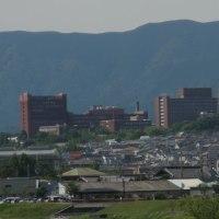 東京都議選「日本共産党の候補者に一票を」