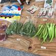 めぐり市。大通りビッセで。野菜買ってきた。