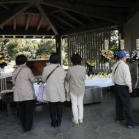 千鳥ヶ淵で櫻を観賞 ⑤ 千鳥ヶ淵戦没者墓苑と靖国神社にお参りしました