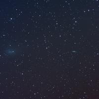 NGC4631とNGC4656に近づく本田・ムルコス・パイドゥシャーコヴァー彗星