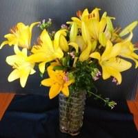 ご近所からたくさんの透かしユリとなでしこ風の花を頂きました~~!
