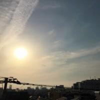 今日も暑い一日になりますね(^o^)(^o^)