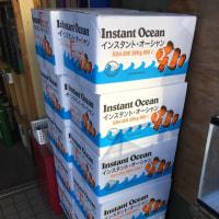 いつでも特価!人工海水インスタントオーシャン