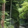 滝道 (2)