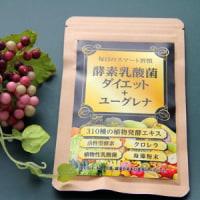 酵素乳酸菌ダイエット+ユーグレナ