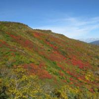 大雪山系・染まる赤岳 (9月25日)