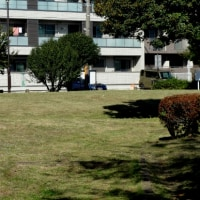 新屋敷公園