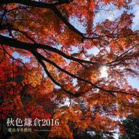 秋色鎌倉2016 建長寺半僧坊の天狗と紅葉