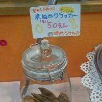 くまさんのぼうけん1/17