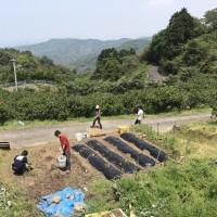 5/13-14 みかん山花見