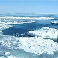 ◆流氷観光砕氷船が運航中・・・・網走「流氷接岸」!!