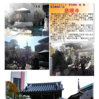 花巡り 「梅-191] 慈眼寺