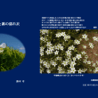 賢治関連七不思議(訪問応諾ドタキャン、#4)