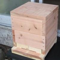 『ハチの家を作ろう!』…バスターズ古民家塾