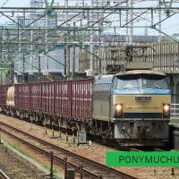 EF66 33 5094レ (2017年6月24日 草薙駅)