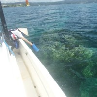 「不屈」で大浦湾へ---まだ続くフロート片づけ作業