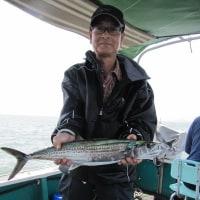 5月14日(日)・鯵釣り