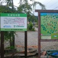 緑の募金事業告知看板の設置