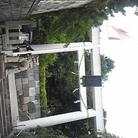 乃木坂からの渋谷「とりかつ」→ボクシング