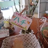 くまさんのぼうけん3/28