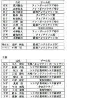 平成28年度東海社会人サッカーリーグ結果報告・DivisionⅠ、Ⅱベスト11・得点王・アシスト王