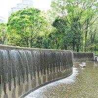 玉川上水を歩く 新宿中央公園