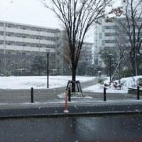 積雪が観測された
