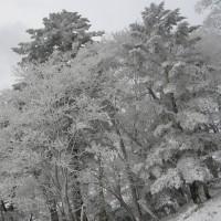 山中の危険な積雪