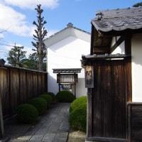 錦鯉&白壁と蔵屋敷の町並み