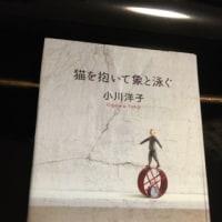 つながり読書96 「猫を抱いて象と泳ぐ」 小川洋子