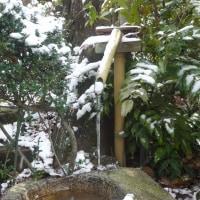 この冬二度目の積雪