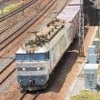 もう1本撮りたい列車がコチラさん(笑) EF510-509 #3