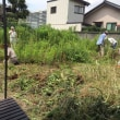 竹あかりを地元墨田区で!!!