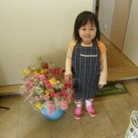 38本の花束