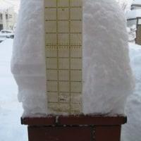 札幌で29年ぶりの大雪