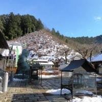 Gifu / Dairyu-ji Temple ( 大龍寺)