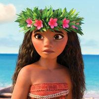 ディズニー映画「モアナと伝説の海」とスタジオジブリの「もののけ姫」が似てる【お陰様で20周年。福岡博多の社交ダンス教室だダンススクールライジングスター】