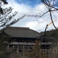 気まま旅:清水寺