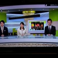 また投稿採用、NHKローカル番組で「恐竜サンタ」。