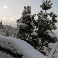 大雪は続く、、、