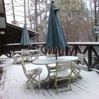 11月の初雪。。