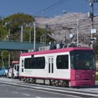 東京の電車 都電荒川線