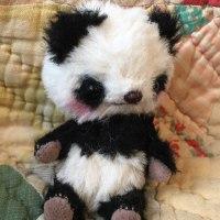 Babyパンダちゃん