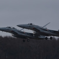 11/22 千歳 F-15