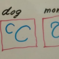 BedStory:猫は、犬になりたい?犬は猫に憧れる。Volume.1