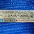 ロッテのトッポ、ふつ~のっ!><(オマケ付:P)