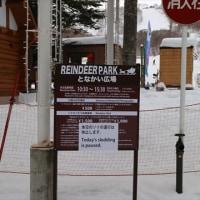 恒例のスキーツアー 12