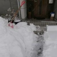 引き続き大雪
