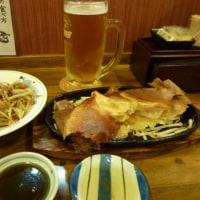 羽つき鉄板餃子&肉みそモヤシ