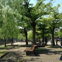 久しぶりの万博公園